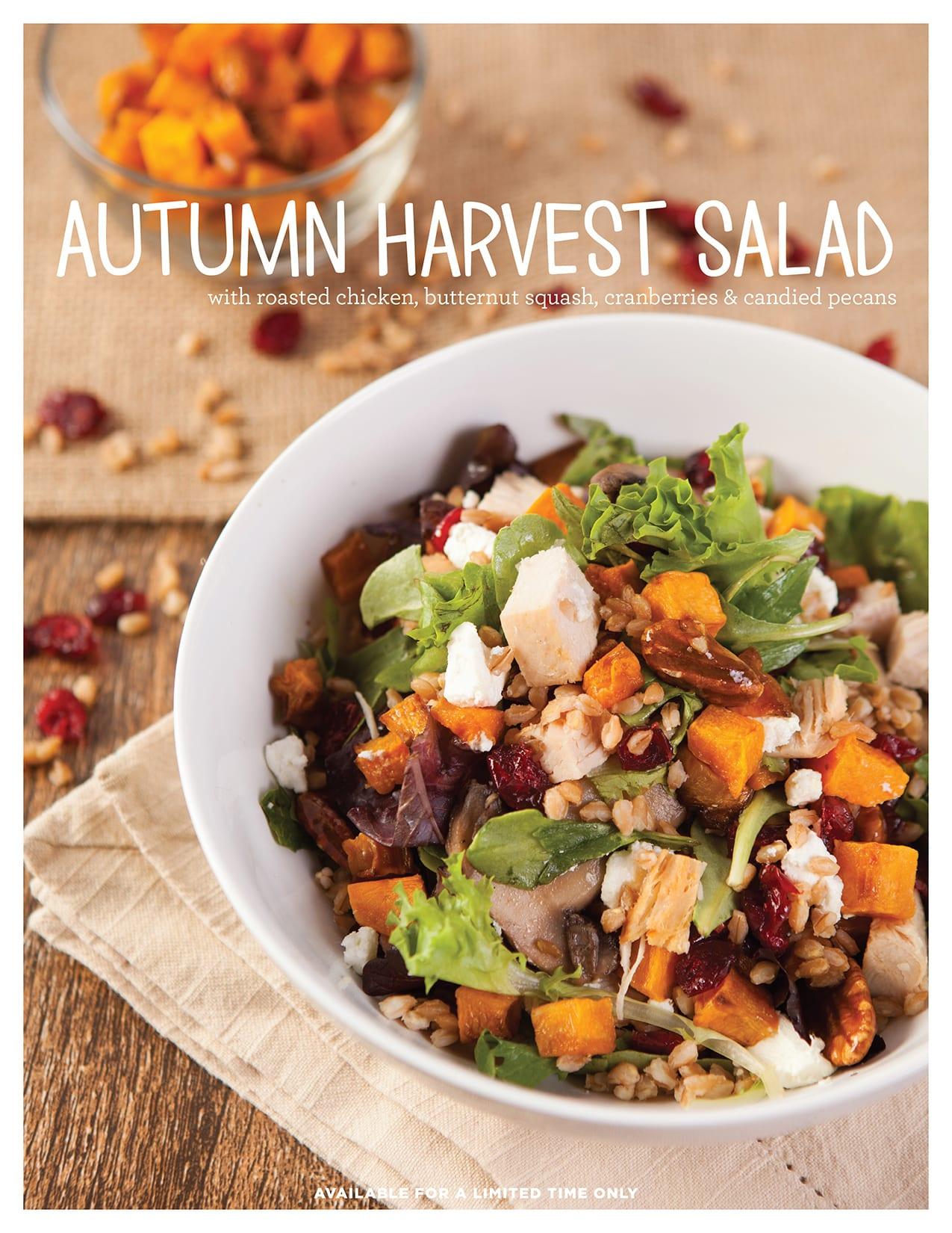 1511_november-LTOs_autumn-harvest-salad_8.5x11_static